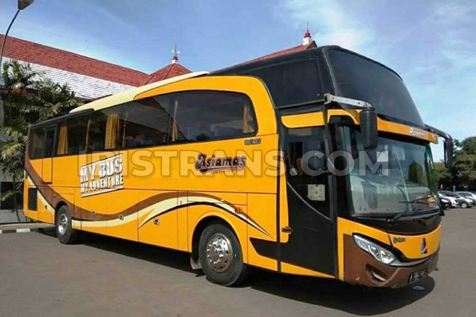 ibistrans.com sewa bus pariwisata asiamas