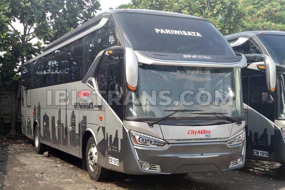 ibistrans.com sewa bus pariwisata citymiles