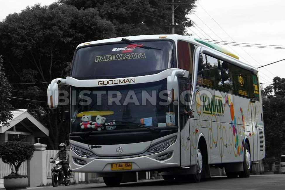 ibistrans.com sewa bus pariwisata kanaya transport