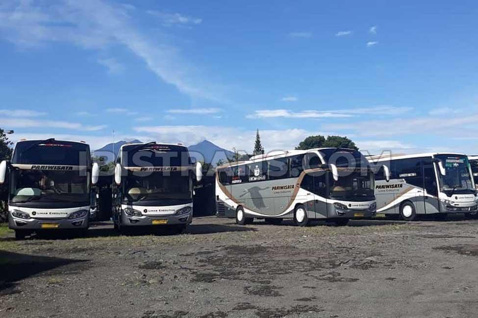ibistrans.com sewa bus pariwisata limas big bus