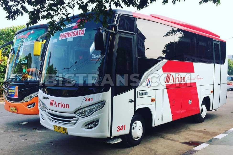 ibistrans.com sewa bus pariwisata medium Arion