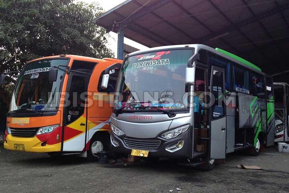 ibistrans.com sewa bus pariwisata medium adhi prima