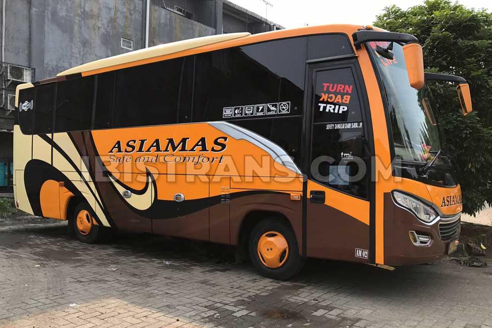 ibistrans.com sewa bus pariwisata medium asiamas