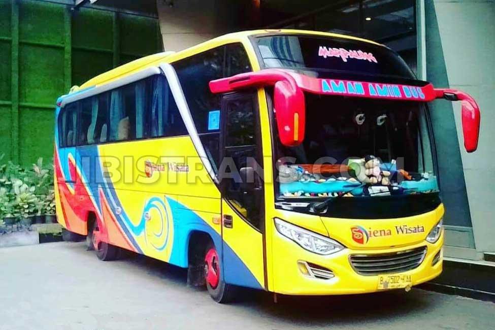 ibistrans.com sewa bus pariwisata medium siena wisata