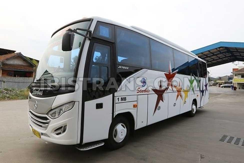 ibistrans.com sewa bus pariwisata medium starbus