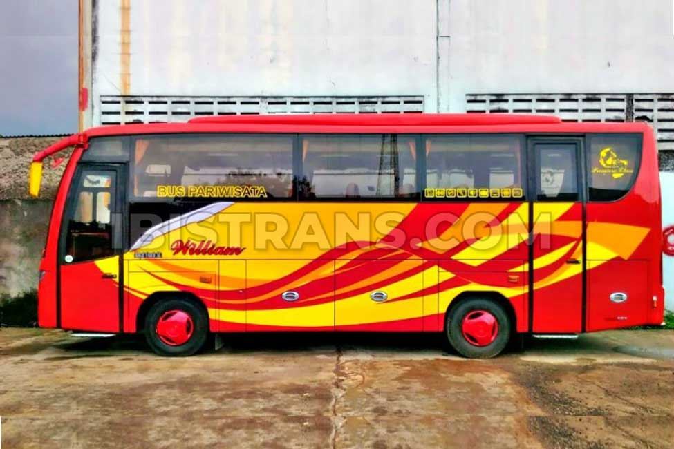 ibistrans.com sewa bus pariwisata medium william