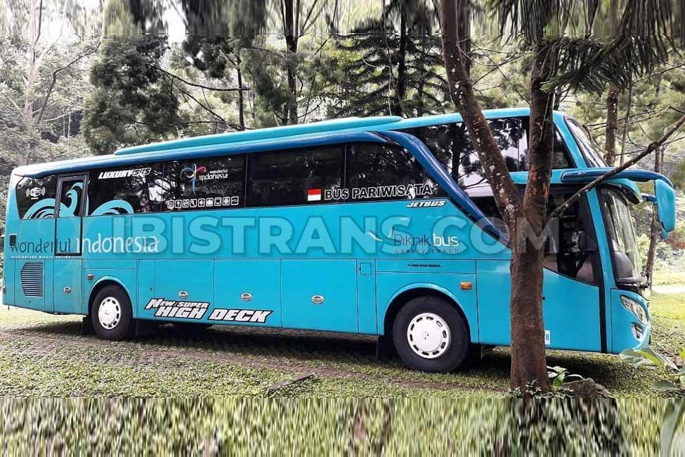 ibistrans.com sewa bus pariwisata piknik bus HDD