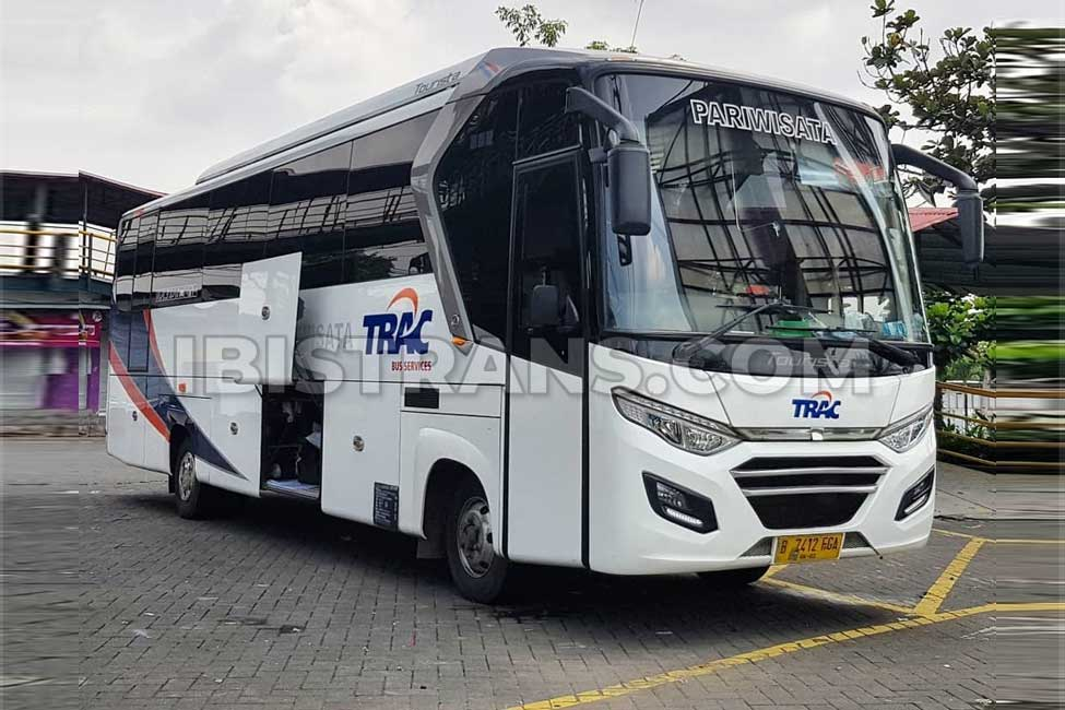 ibistrans.com sewa bus pariwisata trac medium tourista