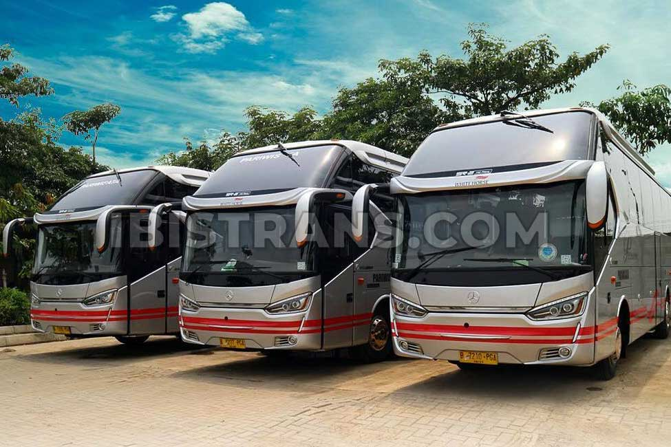 ibistrans.com sewa bus pariwisata white horse big bus