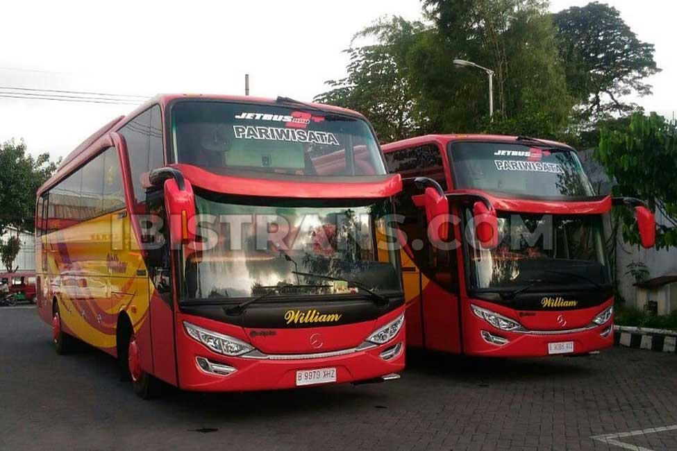ibistrans.com sewa bus pariwisata william HDD