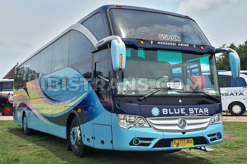 ibistrans.com foto bus pariwisata Blue Star morodadi prima