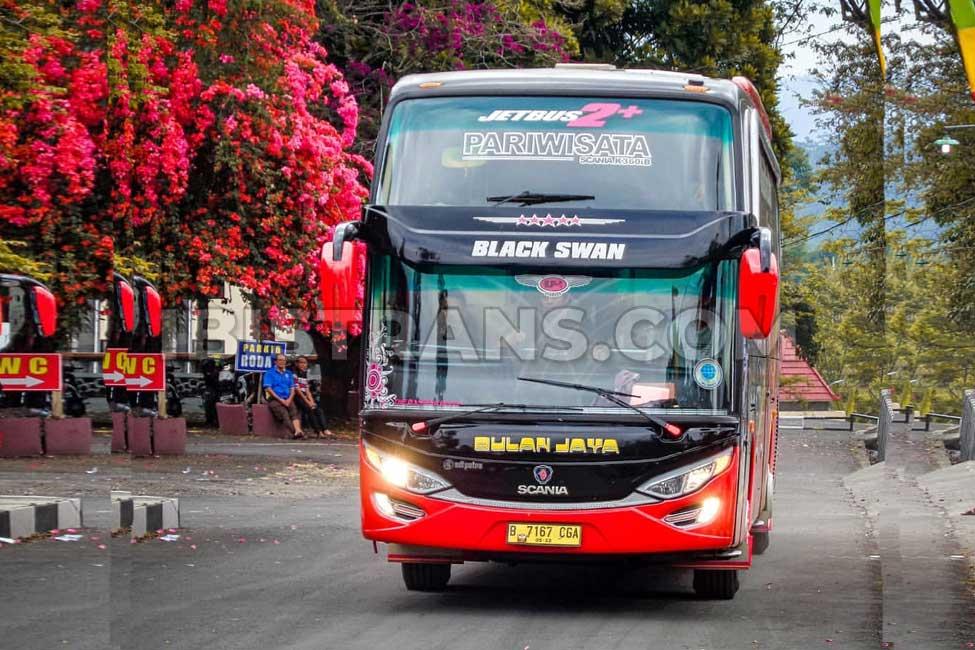 ibistrans.com foto bus pariwisata bulan jaya 59 seat