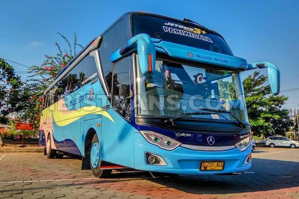 ibistrans.com foto bus pariwisata jakarta Blue Star
