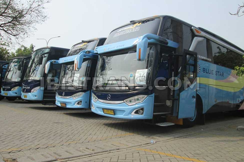 ibistrans.com po bus pariwisata di Jakarta Blue Star