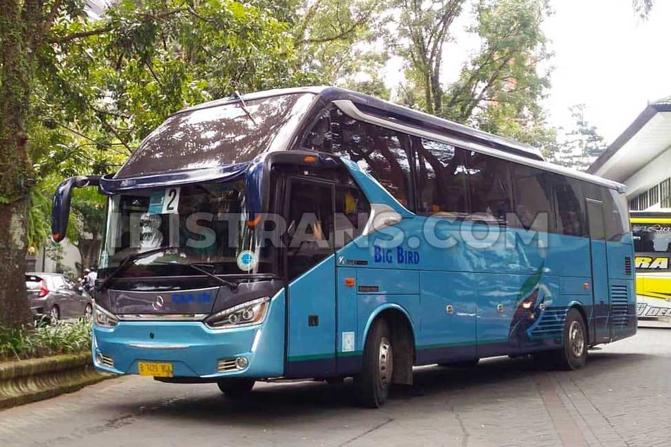ibistrans.com sewa bus pariwisata big bird HDD 45 seat