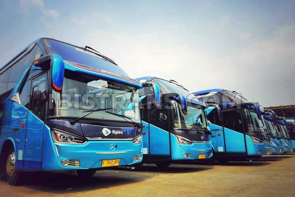 ibistrans.com sewa bus pariwisata big bird SHD HDD