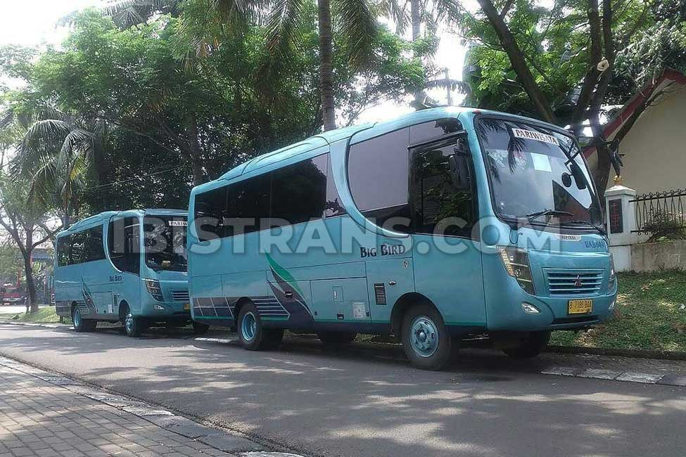 ibistrans.com sewa bus pariwisata big bird medium