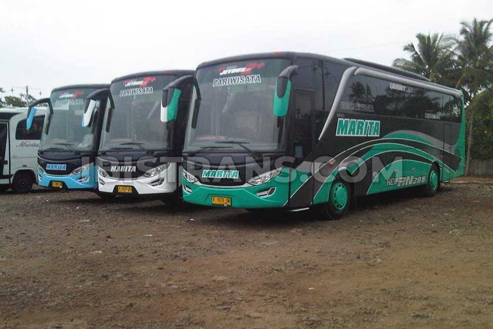 ibistrans.com sewa bus pariwisata marita 59 seat