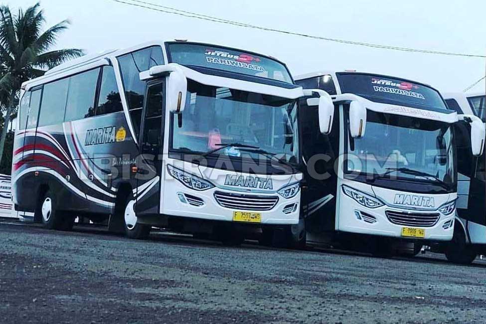 ibistrans.com sewa bus pariwisata marita medium