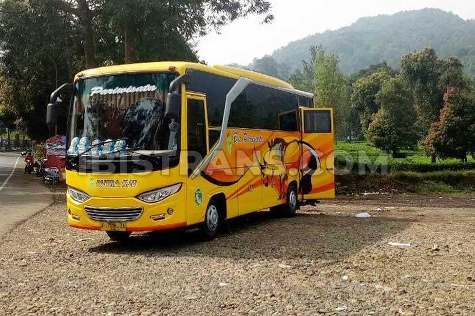 ibistrans.com sewa bus pariwisata medium Putra KJU