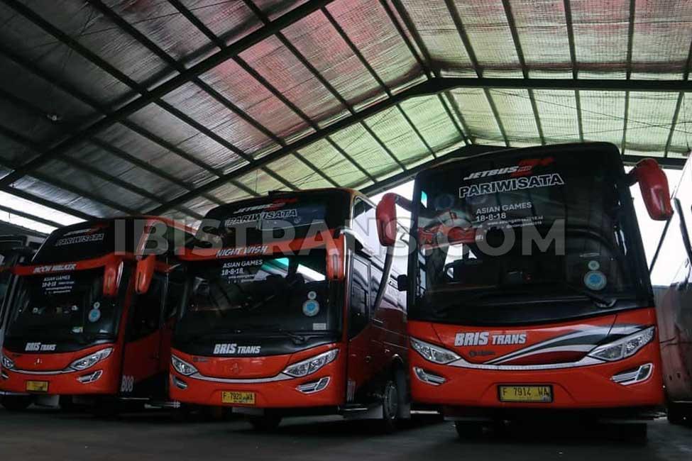 ibistrans.com bus pariwisata jakarta bristrans