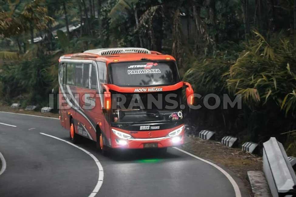 ibistrans.com harga bus pariwisata bristrans