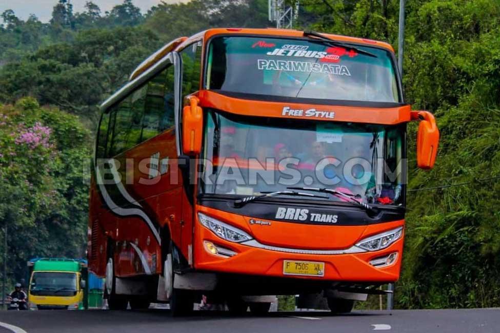 ibistrans.com sewa bus pariwisata bristrans HDD 59 seats