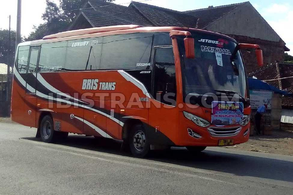 ibistrans.com sewa bus pariwisata medium bristrans
