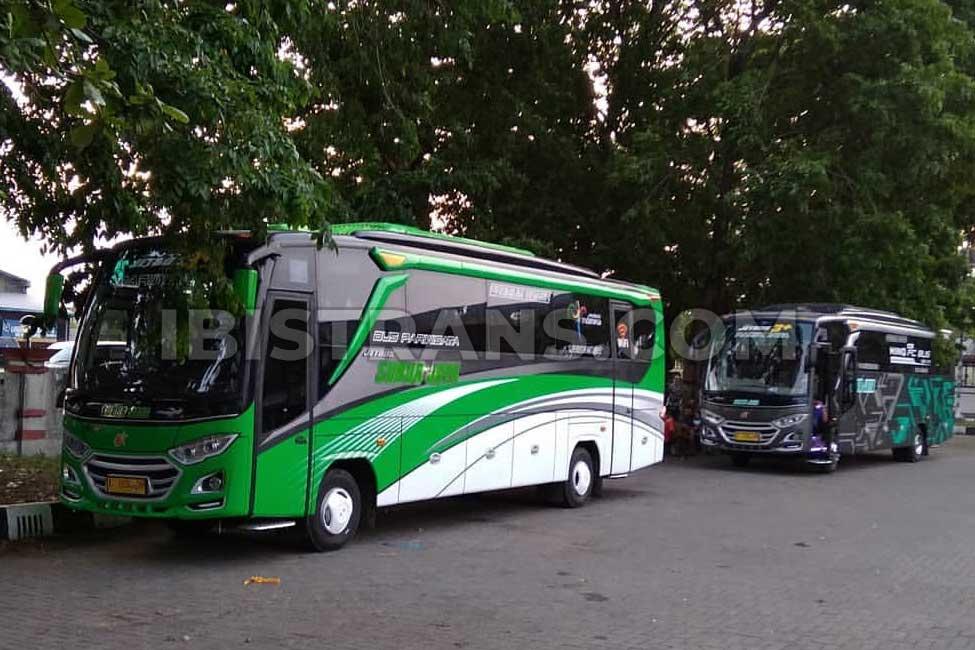 ibistrans.com sewa bus pariwisata medium subur jaya