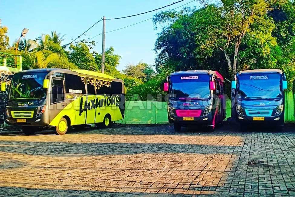 Sewa Bus Pariwisata Piknik Bus unit medium 29 seat