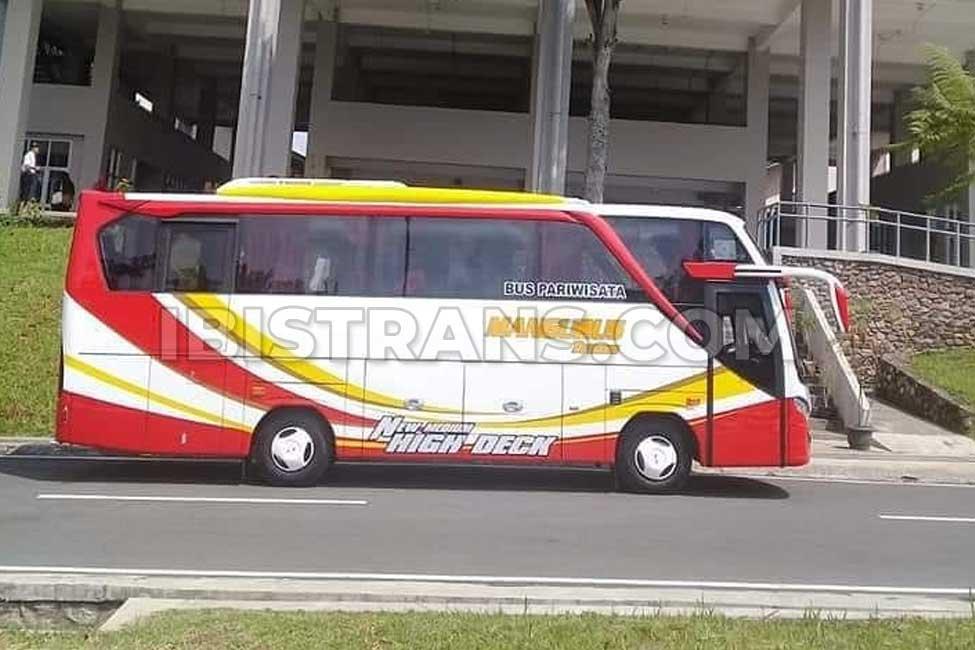 ibistrans.com harga bus pariwisata Mangurus Trans