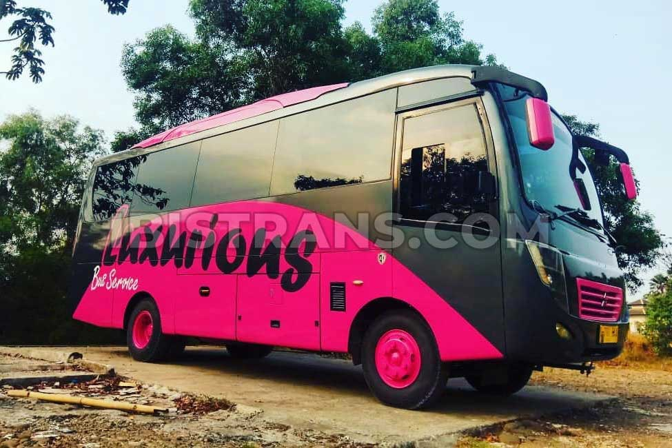 sewa bus pariwisata medium piknik bus