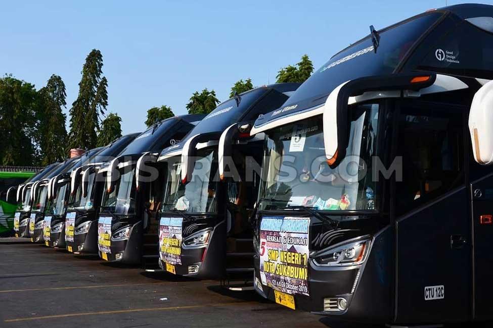 HDD big bus city trans utama