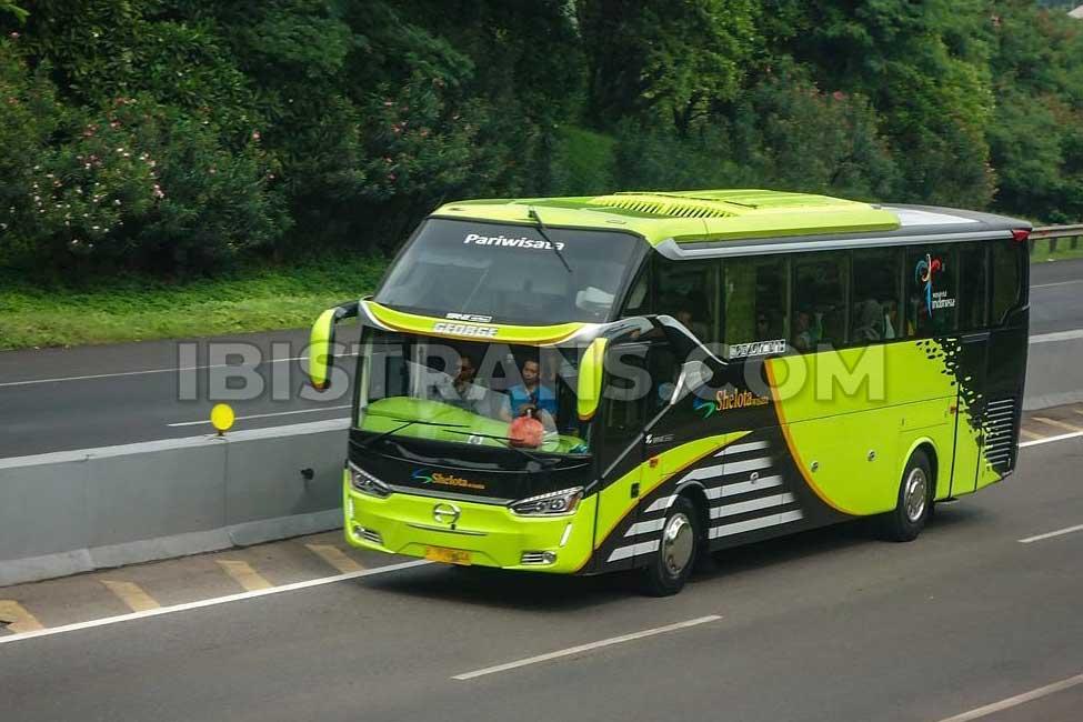 bus besar shelota seri laksana legacy SR2 HD Prime