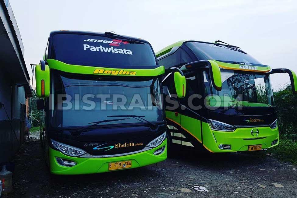 ibistrans.com foto armada bus pariwisata shelota 59 seat