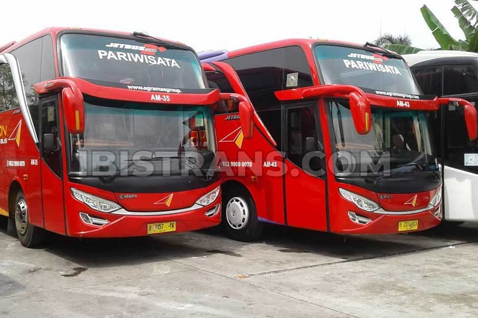 ibistrans.com foto bus agra mas jetbus2 59 seat