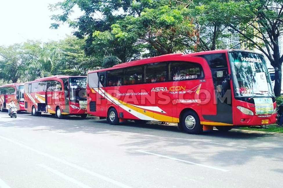 ibistrans.com foto bus besar agra icon armada lama