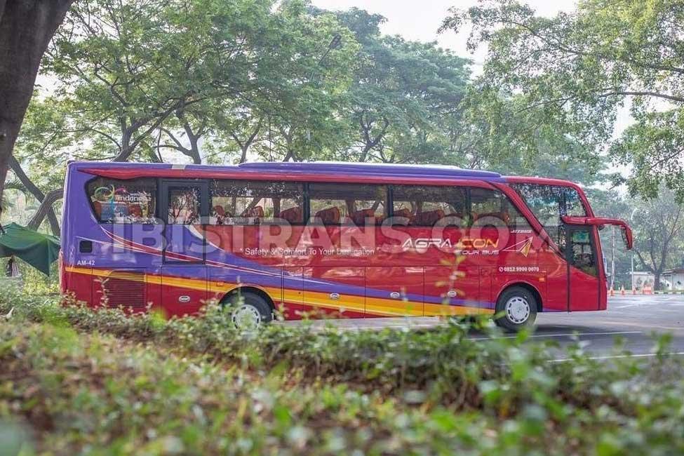 ibistrans.com foto bus besar terbaru agra icon 59 seat