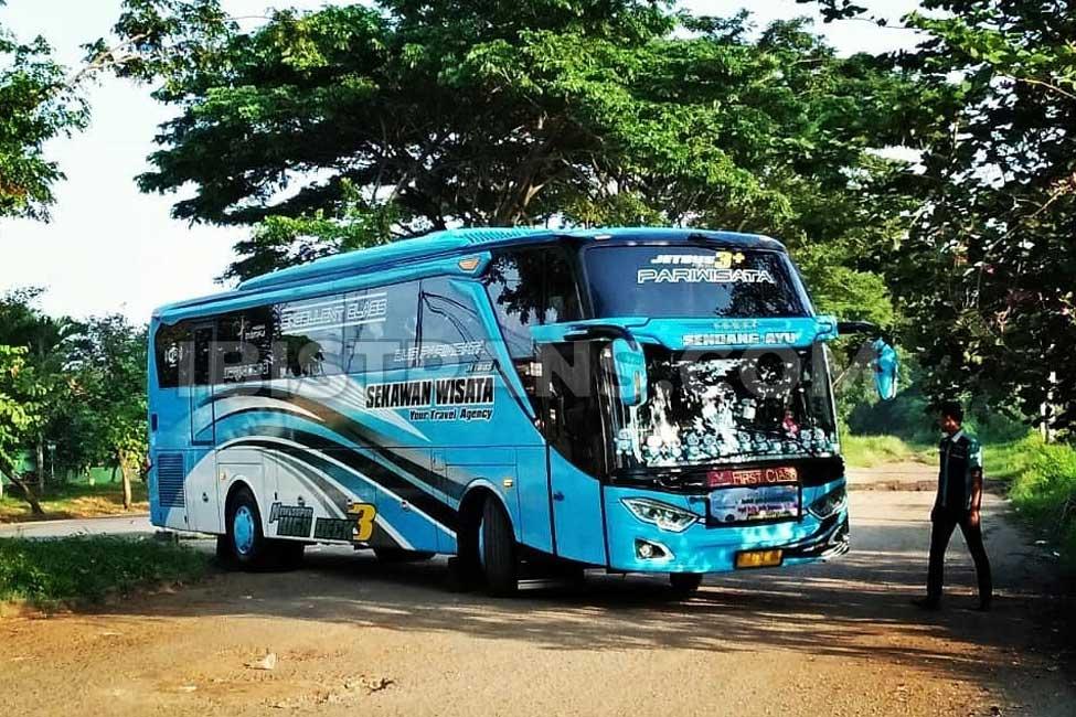 ibistrans.com foto bus pariwisata sekawan wisata Jetbus3 59 seat
