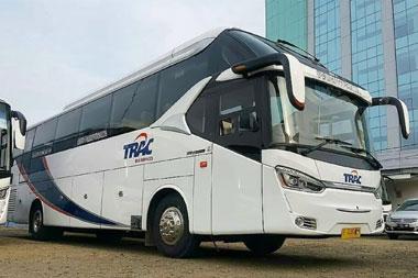 sewa bus pariwisata trac 59 seat